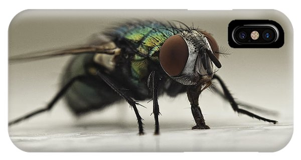 Nikon iPhone Case - The Fly Macro by Michael Ver Sprill