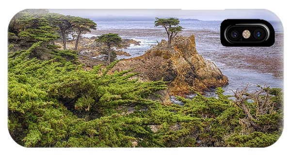 The Lone Cypress IPhone Case
