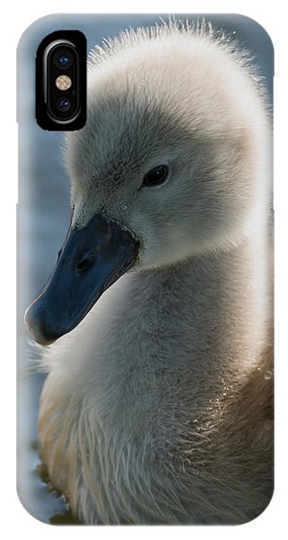 The Ugly Duckling IPhone Case