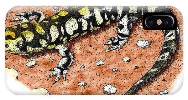 Tiger Salamander IPhone Case