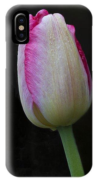 Tulip Bright IPhone Case