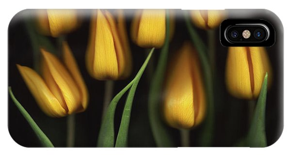 Tulips Phone Case by Brian Haslam