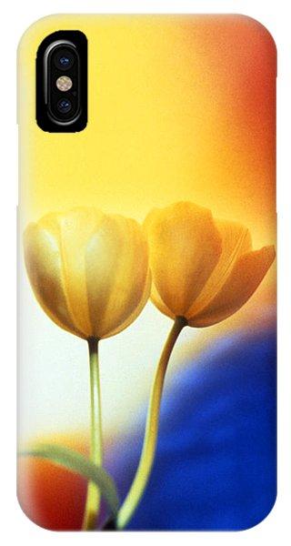Tulips  Phone Case by Etti PALITZ