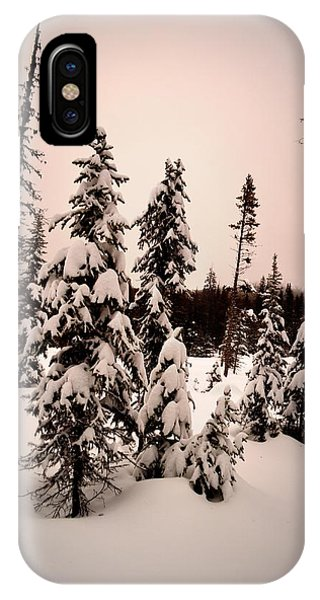 Twilightwinter IPhone Case