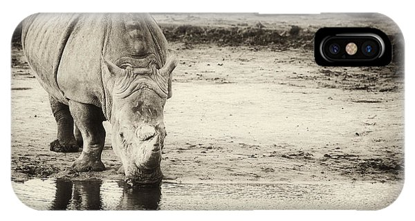 Two White Rhinos  IPhone Case