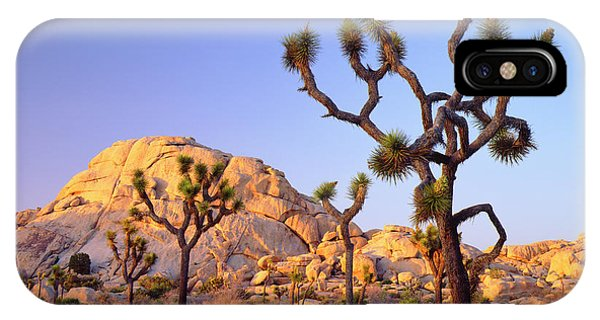 Usa, California, Joshua Tree National Phone Case by Jaynes Gallery