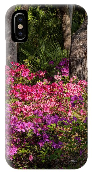 Bougainvillea iPhone Case - Usa, Florida, Edgewater, Edgewater by Lisa S. Engelbrecht