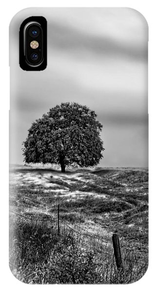 Valley Oak Majesty IPhone Case