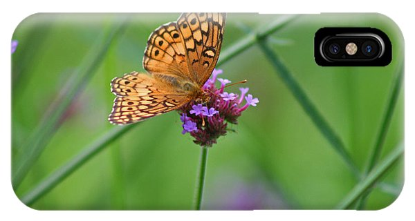 Variegated Fritillary Butterfly In Field IPhone Case