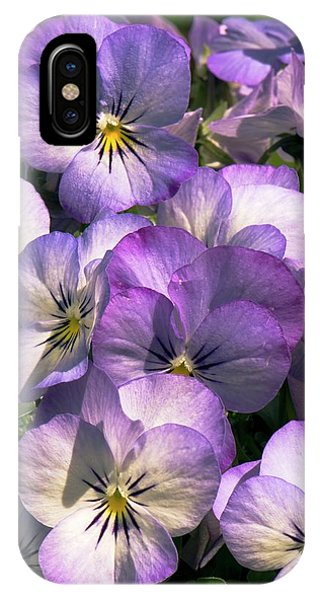 Viola Cornuta Penny Purple Picotee Phone Case by Adrian Thomas