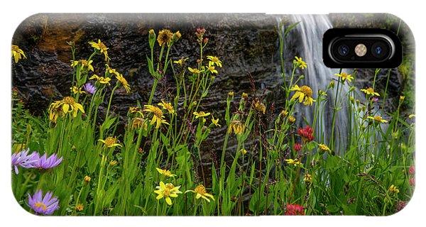 iPhone Case - Waterfall Behind Wildflowers by Tom Norring
