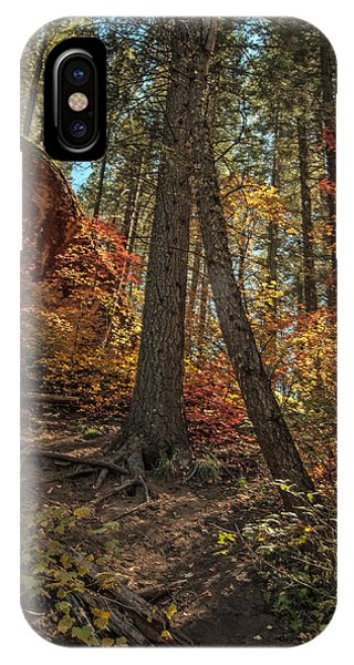 IPhone Case featuring the photograph West Fork Fall Color by Tam Ryan