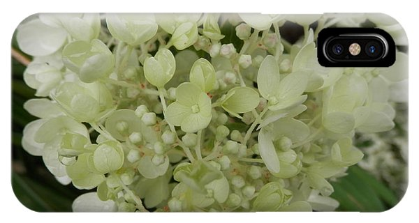 White Hydrangea IPhone Case