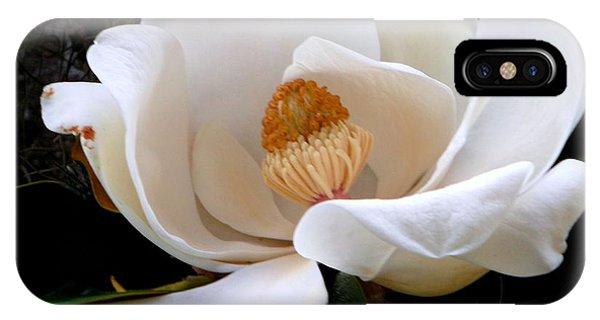 White Magnolia IPhone Case
