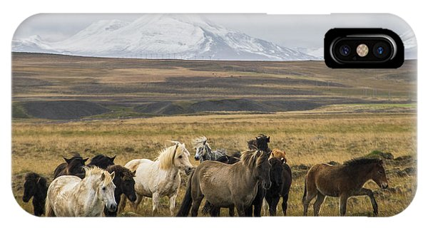Wild Icelandic Horses IPhone Case