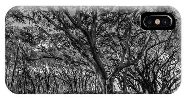 Wind Swept Trees IPhone Case