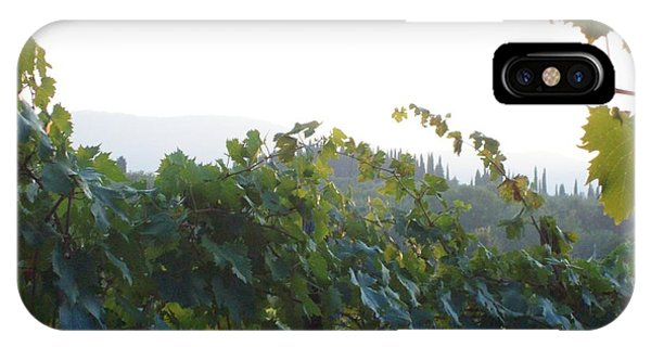 Wine Yards In Loppiano IPhone Case