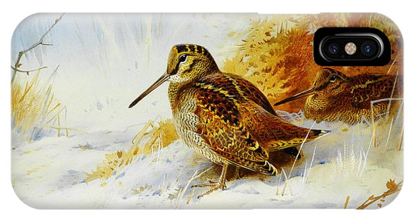Woodcock iPhone Case - Winter Woodcock  by Celestial Images