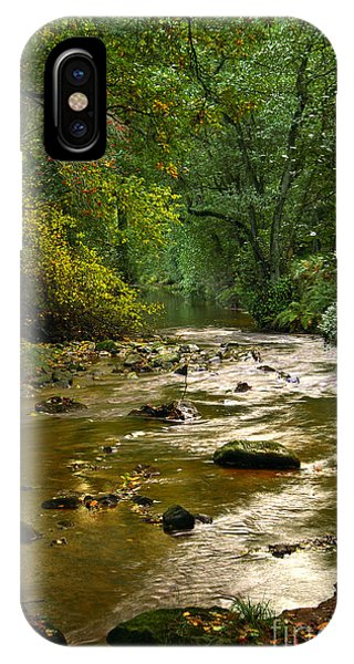 Woodland Stream In Autumn IPhone Case