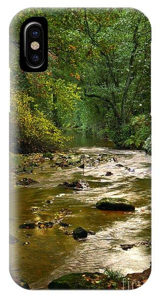 Woodland Stream In Autumn IPhone Case