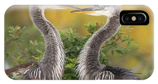 Young Herons Phone Case by Brian Magnier