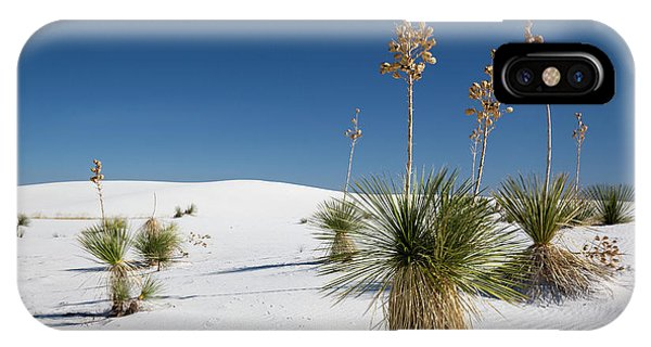 Adapted iPhone Case - Yucca (yucca Elata) Plants by Jim West