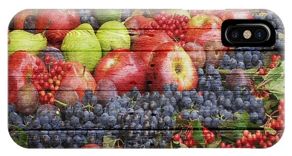 Grapefruit iPhone Case - Fruit by Joe Hamilton