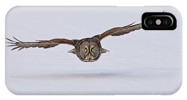 Great Gray Owl IPhone Case