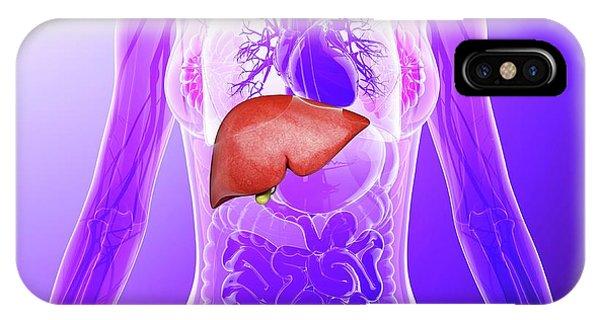 Human Liver Phone Case by Pixologicstudio