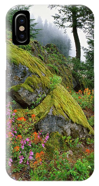 Basalt iPhone Case - Usa, Oregon, Mt Hood National Forest by Jaynes Gallery