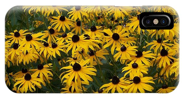 100 Susans IPhone Case