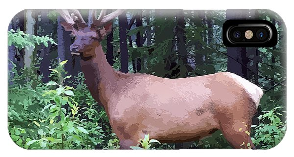 100_0547 Young Bull Elk In Albert Canada IPhone Case