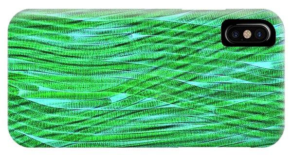 Phytoplankton iPhone Case - Oscillatoria Cyanobacteria by Marek Mis