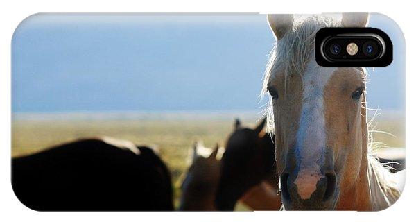 110 Phone Case by Wynema Ranch