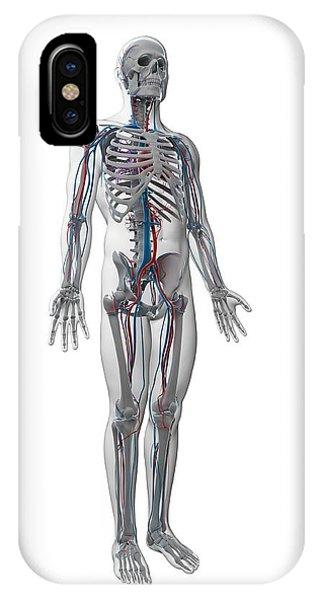 Human Vascular System Phone Case by Sebastian Kaulitzki