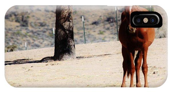 113 Phone Case by Wynema Ranch