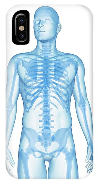 Human Skeletal System Phone Case by Sebastian Kaulitzki