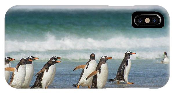 Falkland Islands Phone Case by Inger Hogstrom