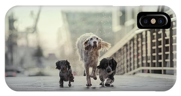Trio iPhone Case - 1,2,3.....go! by Heike Willers