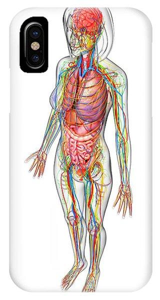 Femoral Vein Iphone Cases Fine Art America
