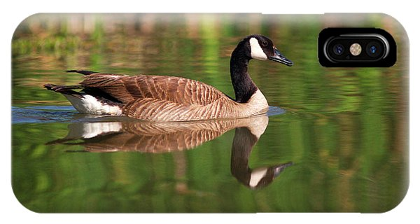 Canada Goose iPhone Case - Usa, California, San Diego, Lakeside by Jaynes Gallery