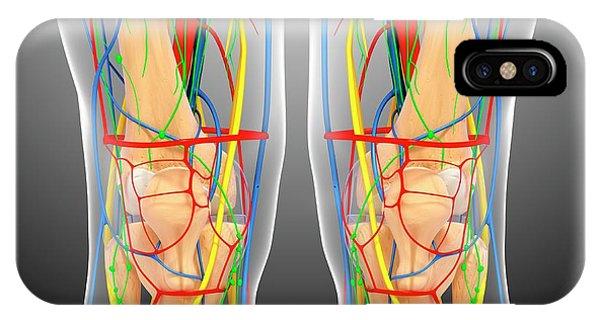Knee Anatomy Phone Case by Pixologicstudio/science Photo Library