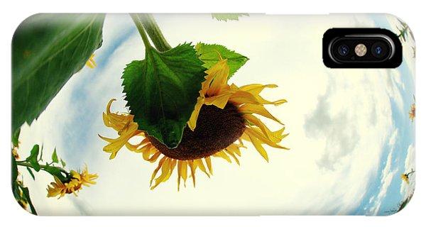 Sunflowers Phone Case by Falko Follert