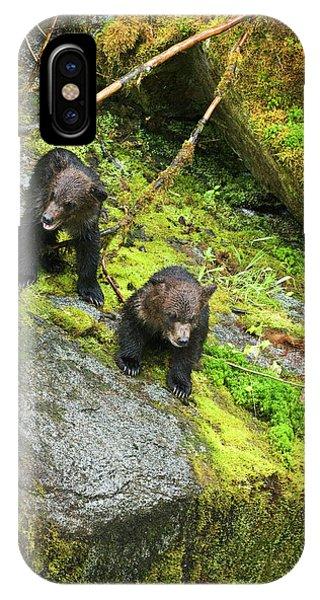 Bear Creek iPhone Case - Usa, Alaska, Inside Passage by Jaynes Gallery