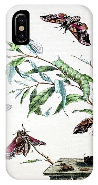 Chrysalis iPhone Case - 1775 Moses Harris Aurelian Eyed Hawk Moth by Paul D Stewart
