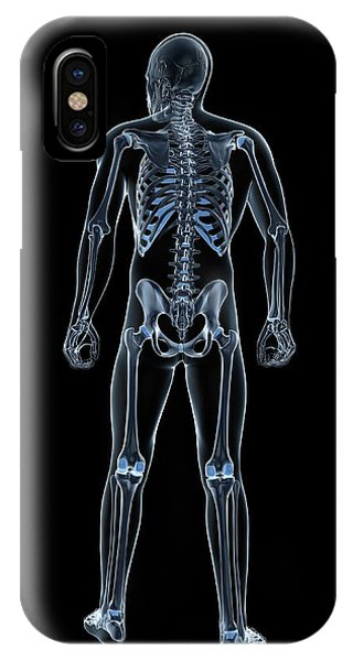 Male Skeleton Phone Case by Sciepro/science Photo Library