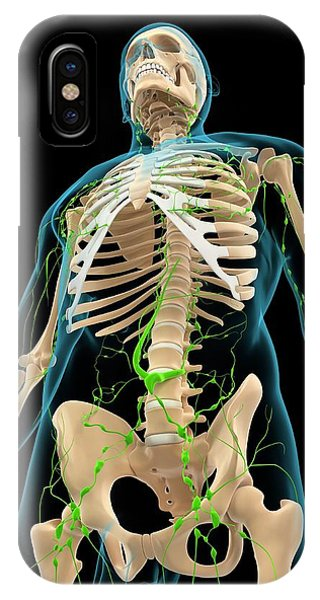 Lymphatic System Phone Case by Sciepro/science Photo Library