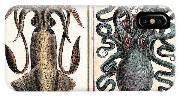 Squid iPhone Case - 1801 Montfort Squid Octopus Engraving by Paul D Stewart