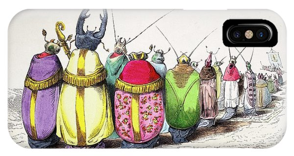 Coleoptera iPhone Case - 1842 Caricature Coloured Church Beetles by Paul D Stewart
