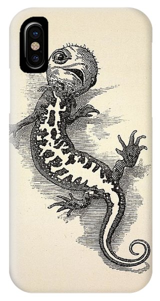 Newts iPhone Case - 1863 Kingsley Waterbabies Human Newt by Paul D Stewart